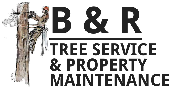 B & R Tree Services & Property Maintenance